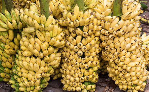 Горы фруктов на рынке