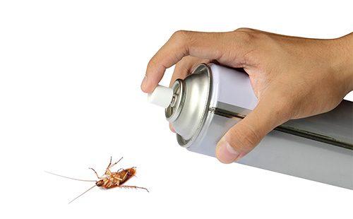 Химическое средство от тараканов