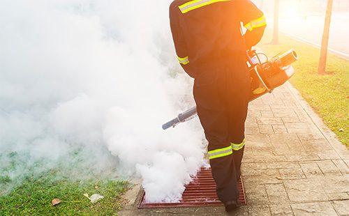 Дымовая шашка от насекомых